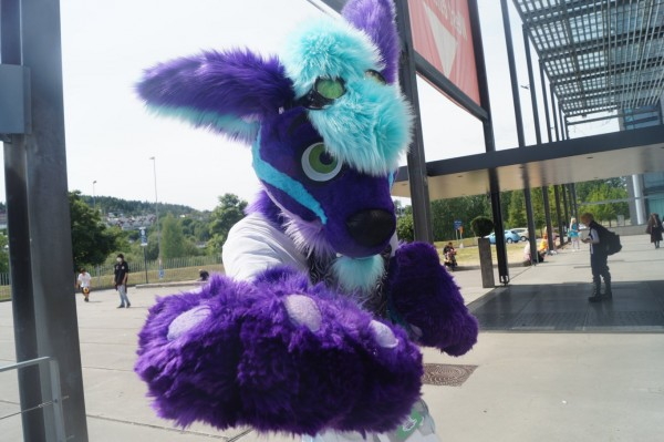 FenDrax | Member's profile | FurryMate - Furry Dating site and